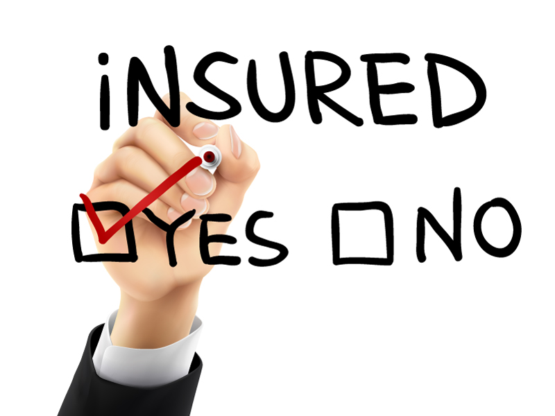 Insurance Yes or No
